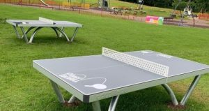 Solihull parks table tennis